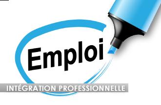 Intégration professionnelle